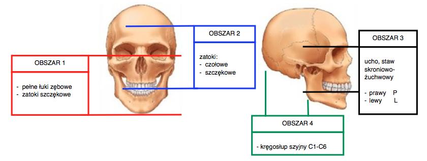 Rodzaje badań Tomografia dentystycznai laryngologiczna Poznań